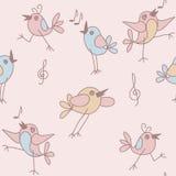 Funny birds Stock Photo