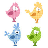 Funny birds Stock Photo