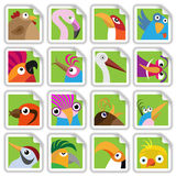 Funny birds set Royalty Free Stock Photography