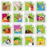 Funny birds set vector illustration