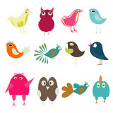 Funny birds Royalty Free Stock Images