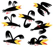 Funny birds set. isolated crown characters. Vector illustration. In cartoon style vector illustration