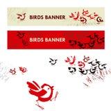 Funny birds Stock Photos
