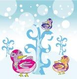 Funny birds in winter garden Stock Photos