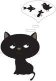 Funny black cat. Stock Image
