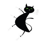 Funny black cat Stock Images