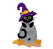 Funny black cat and the tombstone. Halloween. Royalty Free Stock Photography