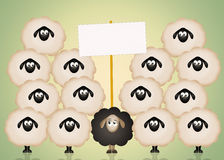 Funny black sheep Royalty Free Stock Photography