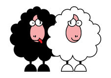 Funny black and white sheeps Royalty Free Stock Image
