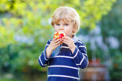 Funny blond kid boy eating healthy apple. Beautiful little kid boy with apple on his first day to elementary school or nursery. Outdoors.  Back to school, kids Royalty Free Stock Image