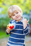 Funny blond kid boy eating healthy apple. Beautiful little kid boy with apple on his first day to elementary school or nursery. Outdoors.  Back to school, kids Stock Images