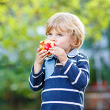 Funny blond kid boy eating healthy apple. Funny little kid boy with apple on his first day to elementary school or nursery. Outdoors.  Back to school, kids Stock Photography