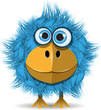 Funny blue bird. Illustration, funny blue bird with big eyes Stock Images