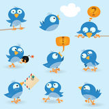 Funny blue birds Royalty Free Stock Image