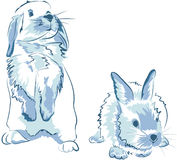 Funny blue rabbits Stock Photo