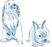 Funny blue rabbits. Two amusing funny blue rabbit Stock Photo