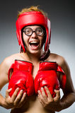 Funny boxer against Stock Photo