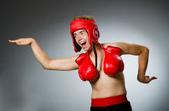 Funny boxer against Stock Image