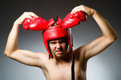 Funny boxer against Royalty Free Stock Photo