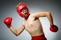 Funny boxer against Stock Photos