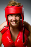 Funny boxer against Stock Photography