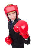 Funny boxer businessman Stock Photography