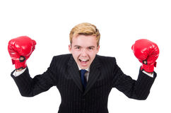 Funny boxer businessman Royalty Free Stock Photo