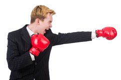 Funny boxer businessman Stock Photos