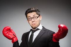 Funny boxer businessman Stock Image