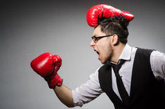Funny boxer businessman Royalty Free Stock Photography