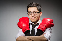 Funny boxer businessman Royalty Free Stock Image