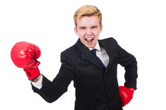 Funny boxer businessman Stock Photos