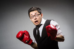 Funny boxer businessman Royalty Free Stock Photos