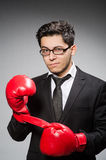 Funny boxer businessman Stock Images