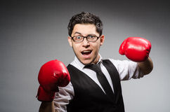 Funny boxer businessman Royalty Free Stock Images