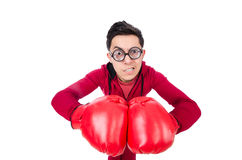 Funny boxer Royalty Free Stock Photography