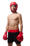 Funny boxer isolated Stock Image