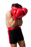 Funny boxer isolated Stock Photo