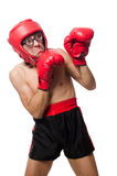 Funny boxer isolated on the white Stock Photos