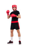 Funny boxer isolated on the white Royalty Free Stock Images
