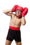 Funny boxer isolated on the white Royalty Free Stock Photography
