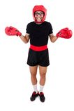 Funny boxer isolated on the white Stock Photography