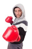 Funny boxer isolated on the white Stock Image