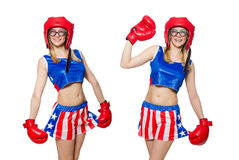 The funny boxer isolated on white Royalty Free Stock Photos