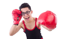 Funny boxer Royalty Free Stock Photo
