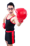 Funny boxer Royalty Free Stock Image