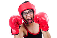 Funny boxer Royalty Free Stock Images
