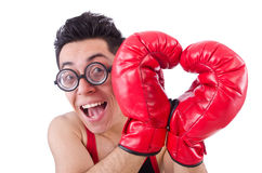 Funny boxer Stock Photos