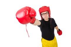 Funny boxer Stock Photos