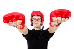 Funny boxer Stock Images